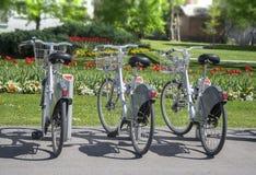 Bicicletas de la ciudad para el alquiler parqueadas imagen de archivo libre de regalías