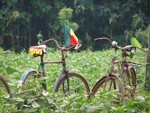 Bicicletas em África Fotografia de Stock Royalty Free