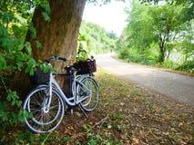 Bicicletas em Europa imagem de stock royalty free