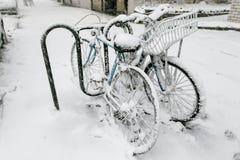 Bicicletas Nevado Foto de archivo