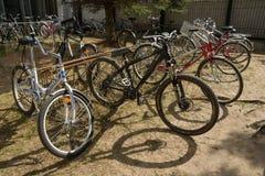 Bicicletas no bicicleta-suporte Imagens de Stock Royalty Free