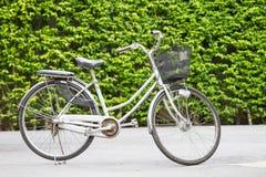 Bicicletas no parque Fotografia de Stock
