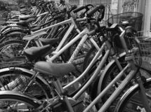 Bicicletas no transporte diário de Japão do Tóquio fotos de stock