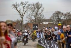 Bicicletas oficiais - Paris-Roubaix 2018 imagem de stock