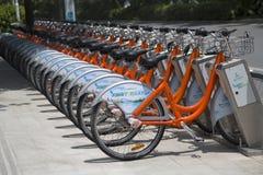Bicicletas para el alquiler Fotos de archivo libres de regalías