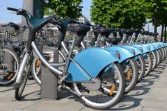 Bicicletas para o aluguel Fotografia de Stock