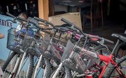 Bicicletas para o aluguel Fotos de Stock Royalty Free