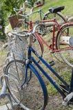 Bicicletas retros do vintage do passado Fotos de Stock
