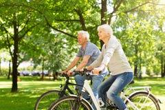 Bicicletas sênior da equitação dos pares imagens de stock