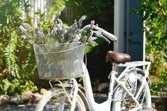Bicicletta bianca d'annata con il mazzo della merce nel carrello dei fiori Immagine Stock Libera da Diritti