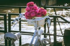 Bicicletta bianca d'annata con il secchio dei fiori immagine stock
