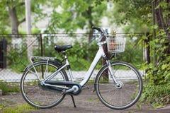 Bicicletta bianca della donna della città con una merce nel carrello del pineappple nel da soleggiato fotografie stock libere da diritti