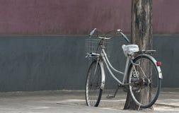 Bicicletta che pende contro l'albero Immagini Stock Libere da Diritti