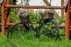 Bicicletta come aiola fotografie stock