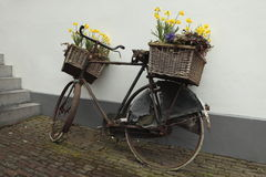 Bicicletta con i cestini del fiore Fotografia Stock