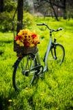 Bicicletta con i fiori Immagini Stock Libere da Diritti