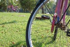 Bicicletta con luce solare fotografia stock