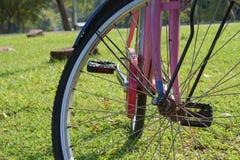 Bicicletta con luce solare fotografia stock libera da diritti