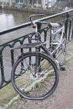 Bicicletta congelata Amsterdam Immagini Stock Libere da Diritti