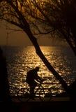 Bicicletta contro il tramonto Fotografia Stock Libera da Diritti