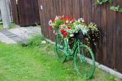Bicicletta d'annata con i fiori Immagini Stock Libere da Diritti