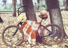 Bicicletta d'annata decorata con pumpking ed i fiori Fotografia Stock