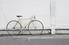 Bicicletta d'annata della strada Immagini Stock