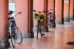 Bicicletta decorata con il girasole a Bologna, Italia immagine stock