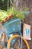 Bicicletta del fiore Fotografia Stock