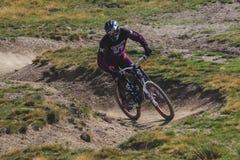 Bicicletta della montagna di guida dell'uomo in discesa immagine stock libera da diritti