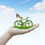 Bicicletta fatta dalle foglie verdi Fotografia Stock