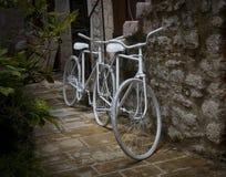 Bicicletta di cerimonia nuziale Immagini Stock Libere da Diritti