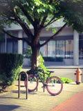 Bicicletta di rosa di Parker sull'angolo della città Fotografie Stock Libere da Diritti