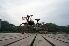 Bicicletta e borsa Immagine Stock