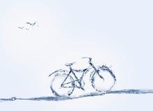 Bicicletta ed uccelli dell'acqua Fotografia Stock