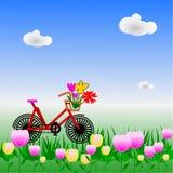 Bicicletta in giardino floreale variopinto, illustrazione Fotografia Stock