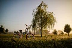 Bicicletta nel giardino verde Fotografia Stock