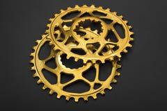 Bicicletta ovale dorata che chainring Immagine Stock