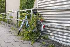 Bicicletta parcheggiata ed invasa sul bordo della strada Immagine Stock Libera da Diritti