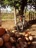Bicicletta pendente Fotografie Stock