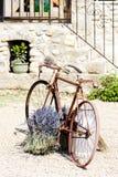 Bicicletta, Provenza Immagini Stock Libere da Diritti