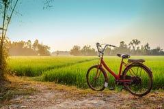 Bicicletta rossa con il fondo rurale di vista immagine stock