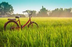 Bicicletta rossa con il fondo rurale di vista fotografia stock