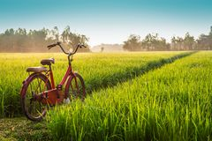 Bicicletta rossa con il fondo rurale di vista immagini stock libere da diritti