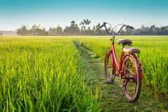 Bicicletta rossa con il fondo rurale di vista fotografia stock libera da diritti