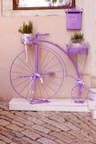 Bicicletta rustica e d'annata all'aperto sulla via Immagini Stock