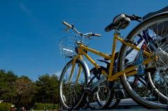 Bicicletta su un'automobile Fotografie Stock Libere da Diritti
