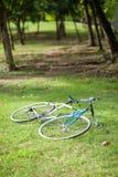 Bicicletta sul giardino Immagine Stock