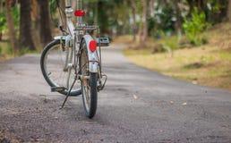Bicicletta sulla via in parco verde immagini stock libere da diritti