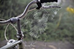 Bicicletta, tempo libero, mistero, ragnatela, ruota, barre della maniglia, il web del ragno, Fotografia Stock Libera da Diritti